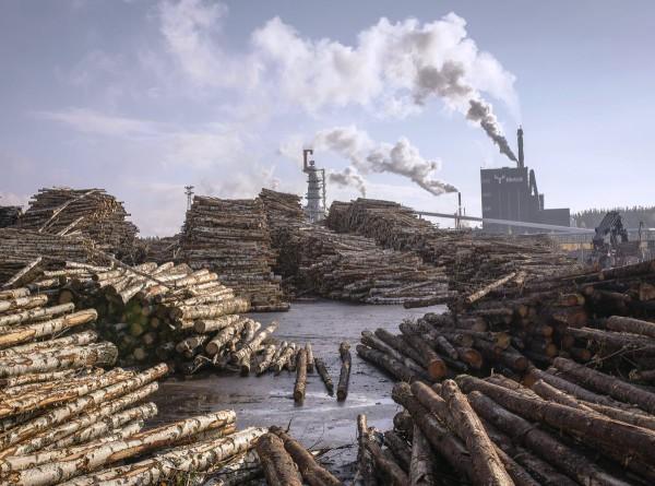 Metsäteollisuus pitää matalista energiaveroista.