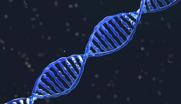 DNA-molekyyli.