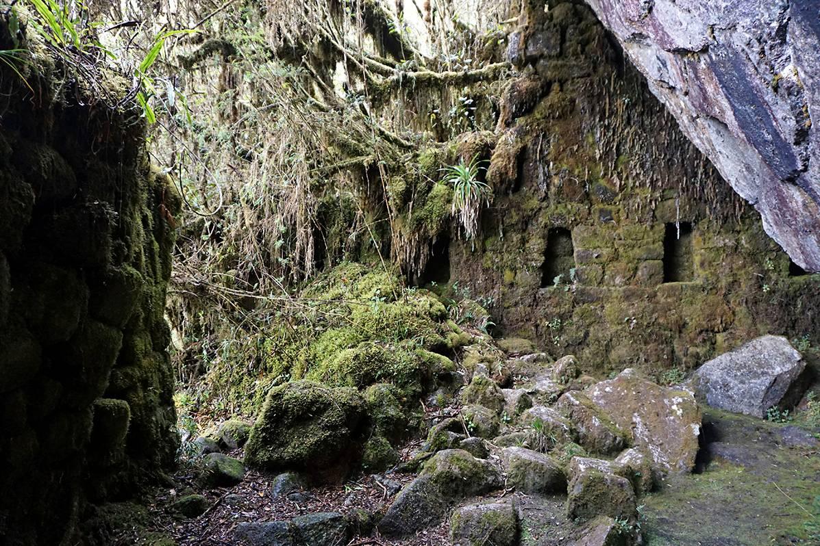 Pachamamalle, Maaäidille, omistettu temppeli löytyi viidakon kätköistä 11. trekkauspäivänä. Kuva Jocelyn Songer