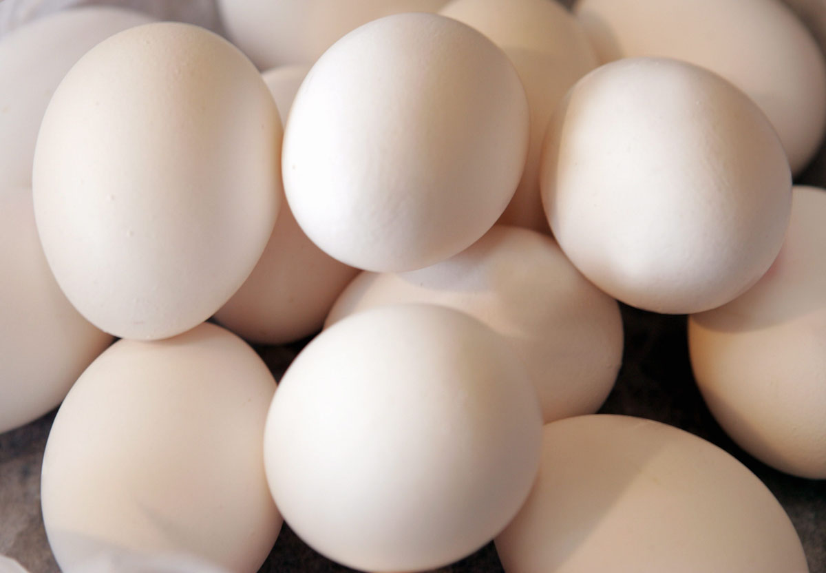 Kananmuna.