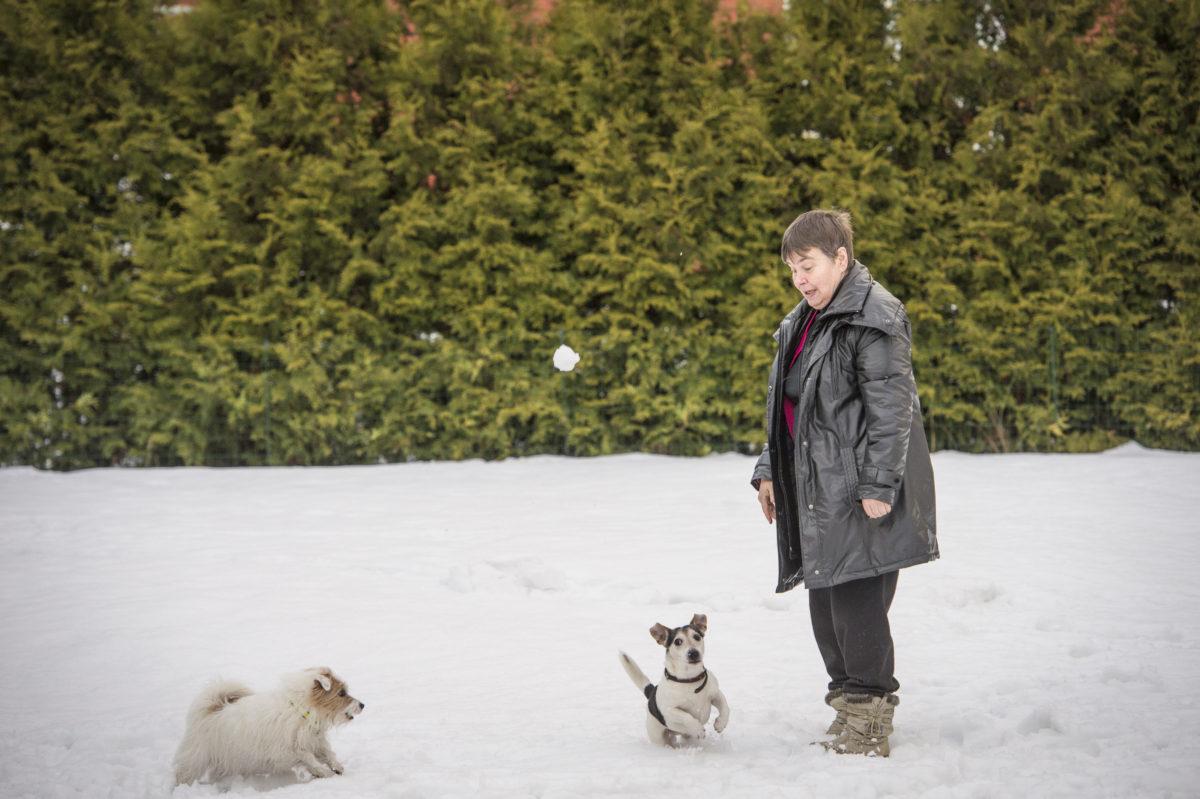 Terttu Utriaisen perheeseen kuuluu kolme jackrussellinterrieriä: Anni, Onni ja Veera.