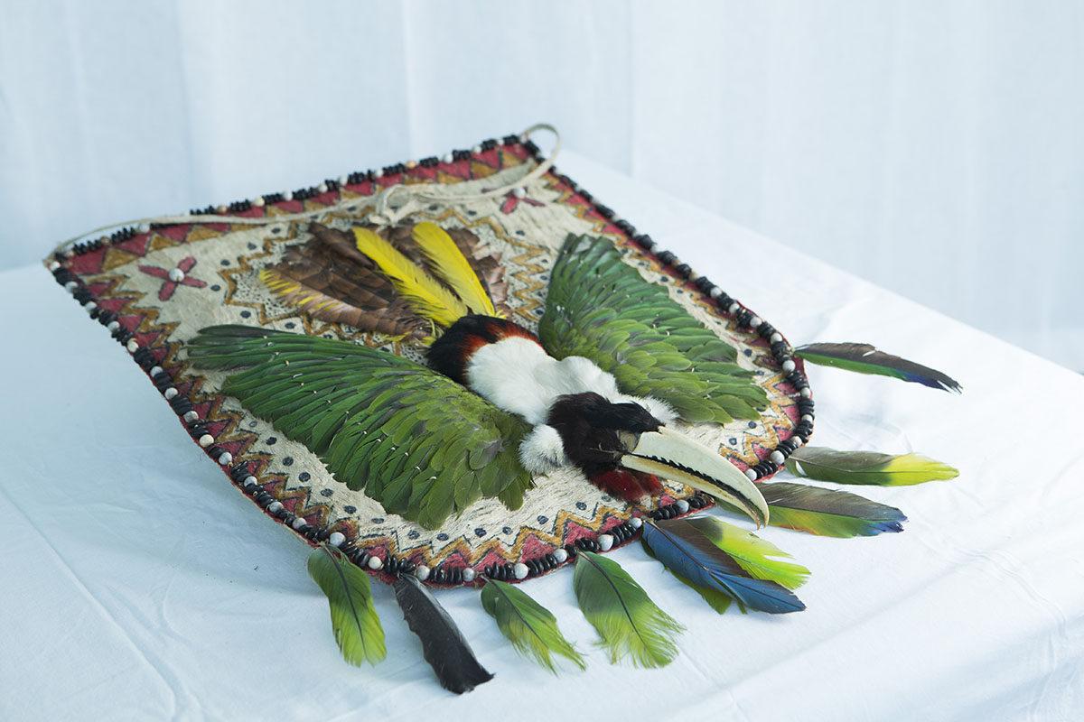 Shuari-intiaanien rintakilpi Ecuadorista.