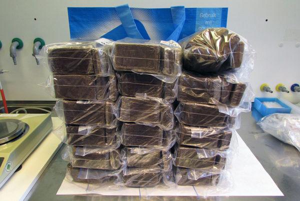 Hasista tuotiin Suomeen Albert Heijn -kauppaketjun ostoskassissa.