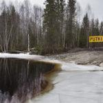 Nuasjärven ranta johon Terrafame Groupin Sotkamon Talvivaaran kaivoksen purkuputki on johdettu.