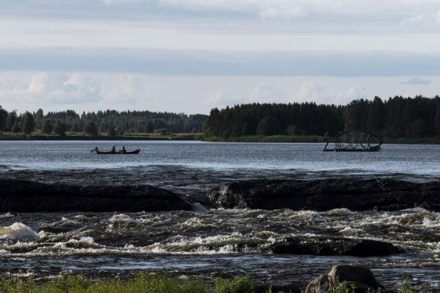 Lohensoutajia Tornionjoen Kukkolankoskella Torniossa Suomen ja Ruotsin rajalla 23. heinäkuuta 2015.