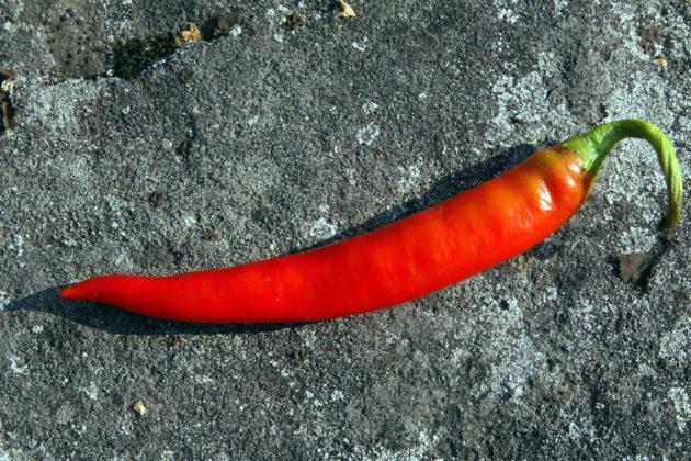 Chilipaprika.