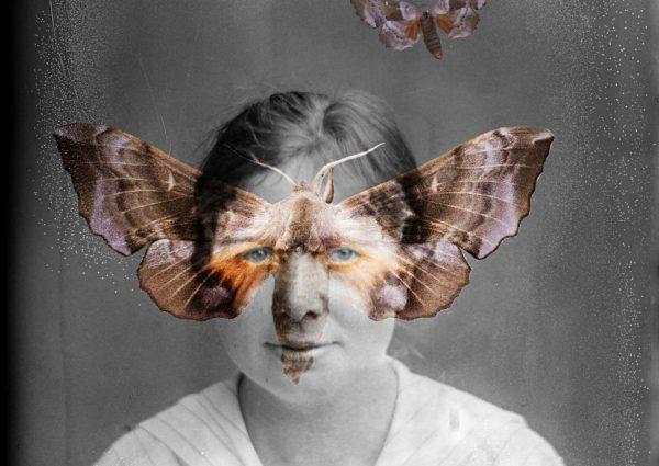 Marjo Levlin: Dividual Individual (2017), osa.