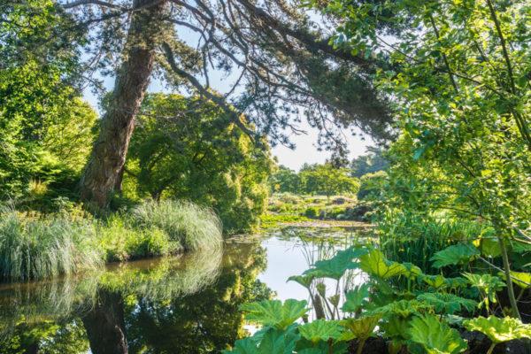 Cambridgen yliopiston kasvitieteellisen puutarhan (CUBG) perusti Charles Darwiniakin ohjannut John Stevens Henslow. Se on yksi laajimmista yliopistojen omistamista tieteellisistä puutarhoista maailmassa. 16 hehtaarin alueella elää 8000 kasvilajia.