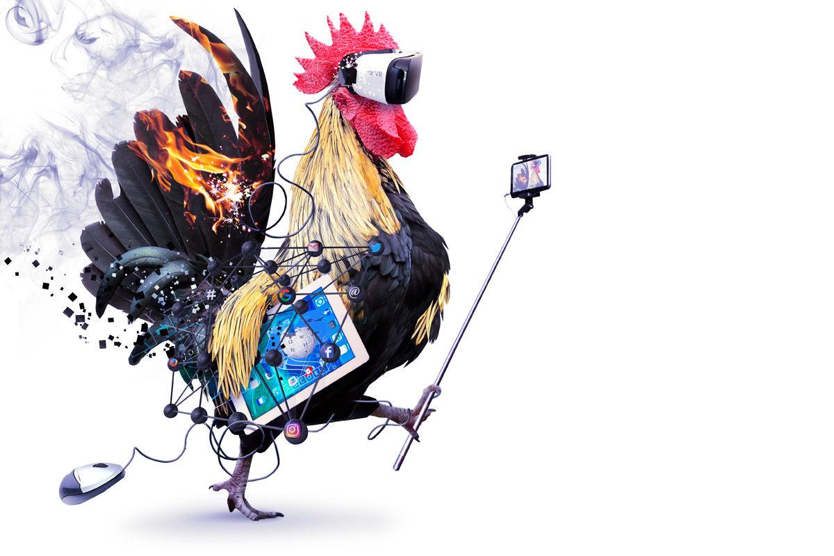 Kuvituskuva: Digitaalinen aapiskukko, jolla on virtuaalilasit, selfie-keppi, tabletti, tietokoneen hiiri, korvakuulokkeet jne. Aapiskukko on liekeissä.