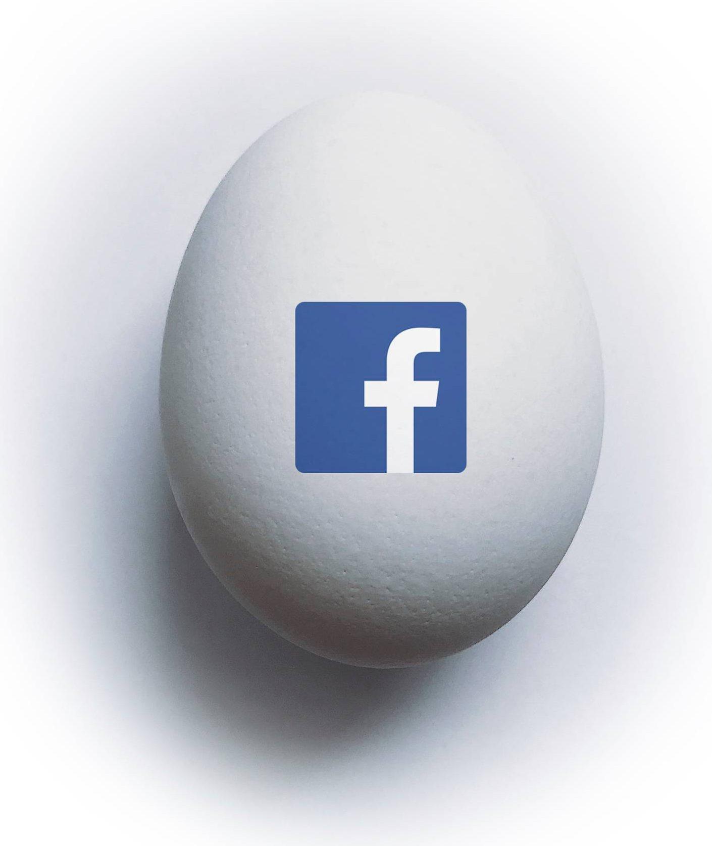 """Kuvituskuva: """"Digimunassa"""" on Facebook-palvelun logo."""