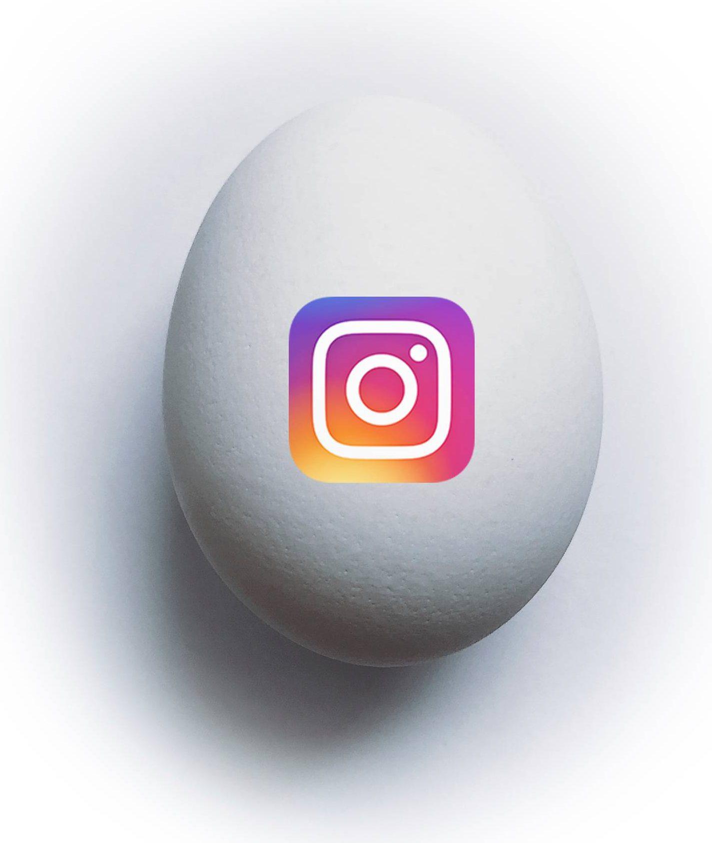 """Kuvituskuva: """"Digimunassa"""" on Instagram-palvelun logo."""