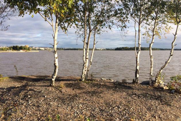 Verkkosaaren rantaa Helsingissä syksyllä 2017.