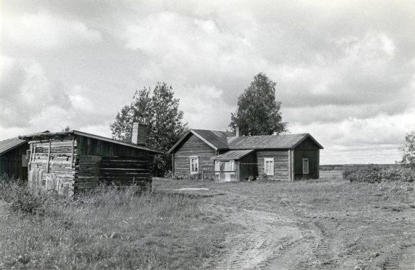 Kalle Päätalon lapsuuskoti koottiin käytetyistä hirsistä 1922. Sitä laajennettiin kymmenkunta vuotta myöhemmin uudella isommalla tuvalla. Kuvassa Kallioniemi on vuoden 1986 ryhdissä, jollaisena se siirtyi Taivalkosken kunnan omistukseen.