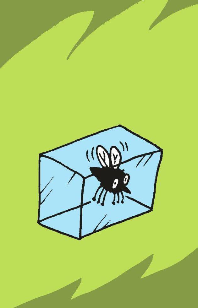 Piirroskuvitus: Hyönteinen jääpalassa.
