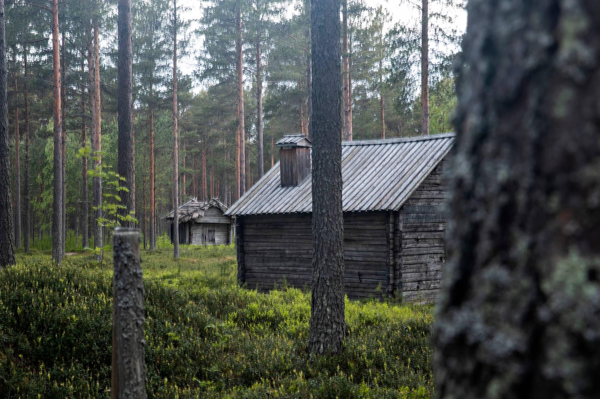 Museotaloja Kniivilän tilalla.