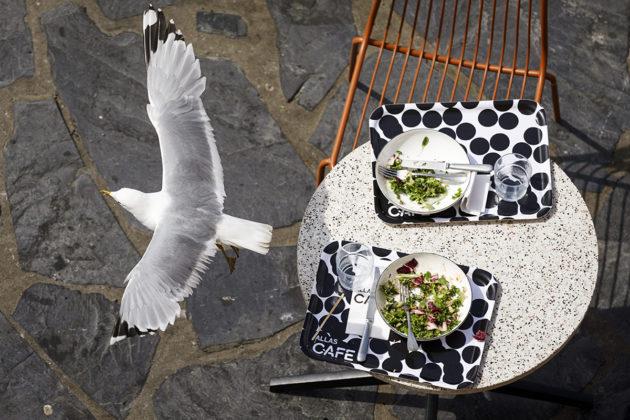 Lokki kärkkyi ravintolaruoan tähteitä Helsingissä kesäkuussa 2018.