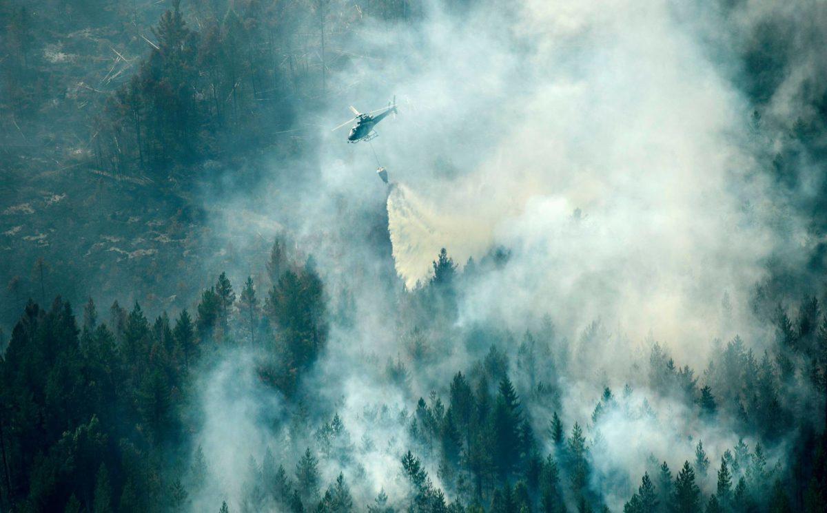 Ruotsin Ljusdalissa sammutettiin metsäpaloa heinäkuun 18. päivänä.