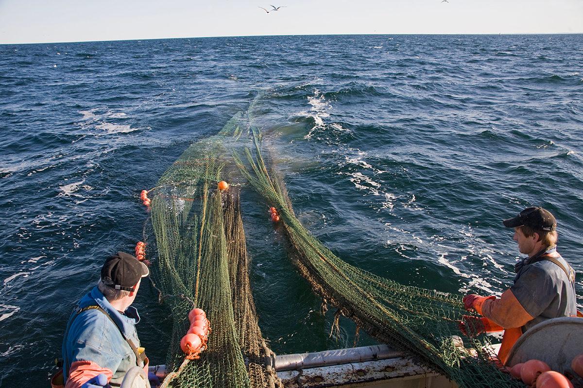 Kalastusta Itämerellä. Kuvituskuva.