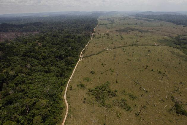 Hakattua sademetsää Brasiliassa. Arkistokuva.