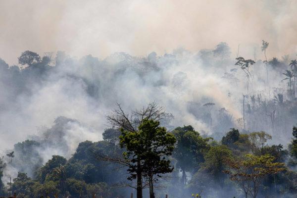 Sademetsä paloi Parán osalvatiossa Brasilian pohjoisosassa 27. elokuuta 2019.