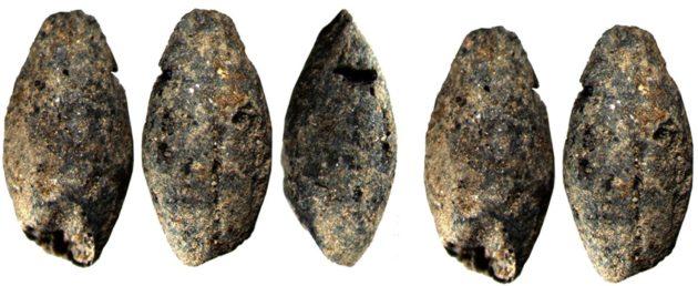 5000 vuotta vanhat ohranjyvät toivat uutta tietoa ajan elinkeinoista.