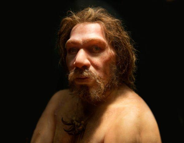 Luiden pohjalta rakennettiin nukke esittämään neandertalilaismiestä.