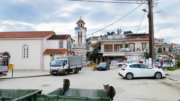 Kissat tarkkailevat katuelämää kirkon edustalla Drepanon kylässä Etelä-Kreikassa.