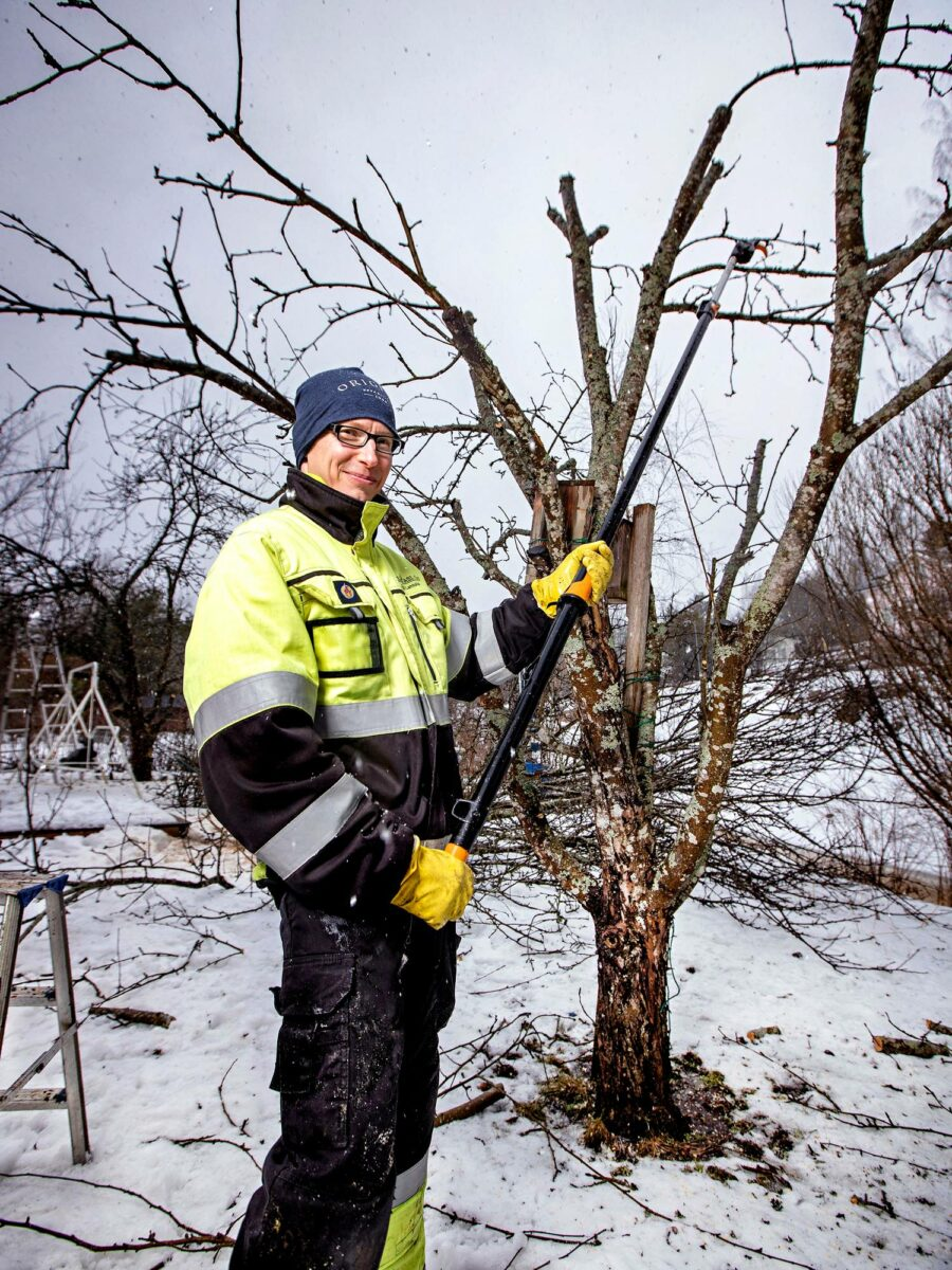 JelpPasi Oy:n Pasi Lehtola leikkaa yksin asuvan eläkeläisen Mirja Tynyksen omenapuita kesäkuntoon Vihdin kirkonkylässä.