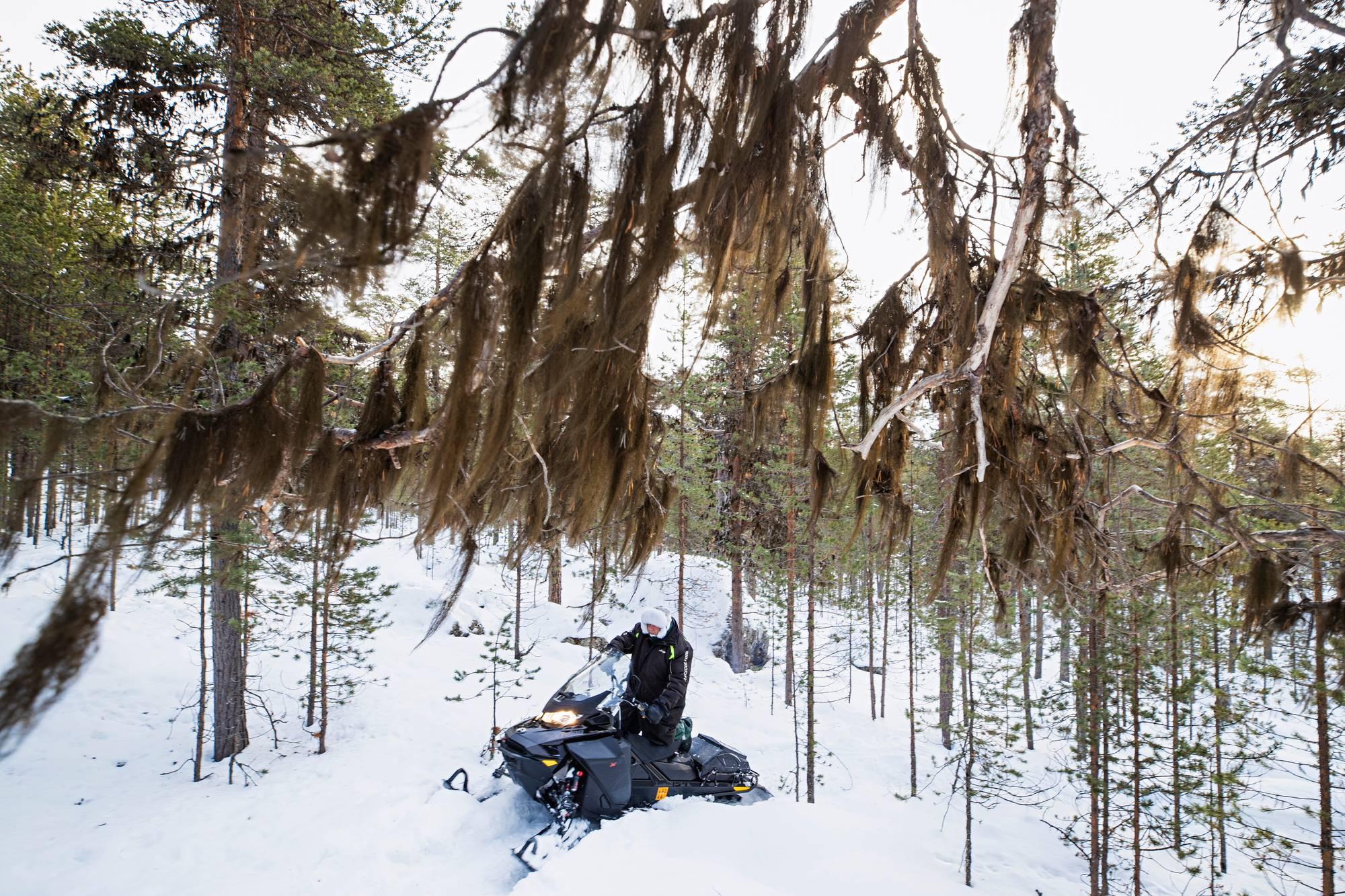 Leo Aikio ajaa moottorikelkalla kivistä rinnettä ylös Kaapin-Matin vaaralle.
