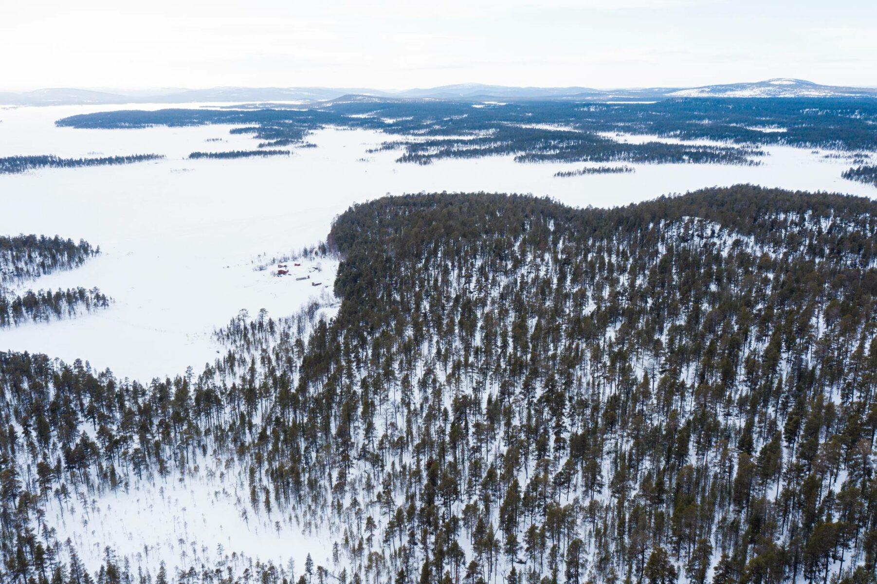 Lapin ikimetsien puita Inarin yhteismetsästä matkalla haketettavaksi lämpö- ja sähköenergiaksi Inergia Oy:n varastoalueella Ivalon Lintumaan teollisuusalueella 3.3.2021.