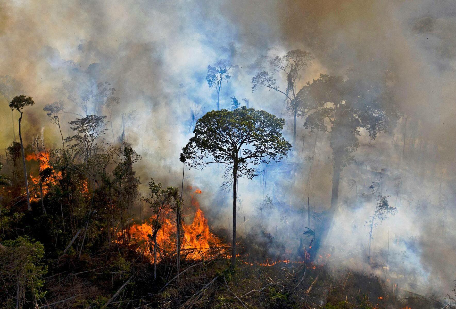 Tahallaan sytytetty palo Amazonin sademetsässä elokuussa 2020.