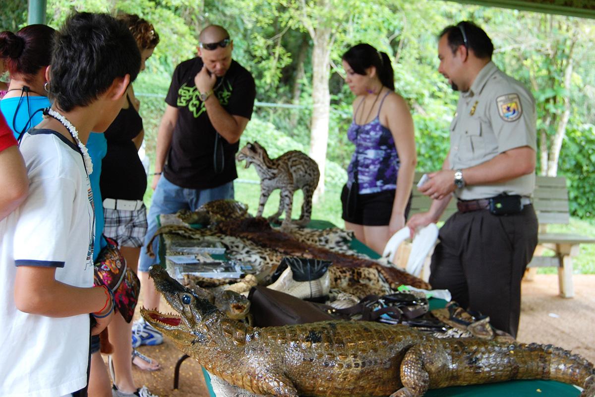 Riistanvartija kertoi laittomasta eläinkaupasta ja siitä annettavista tuomioista Puerto ricossa toukokuussa 2011.