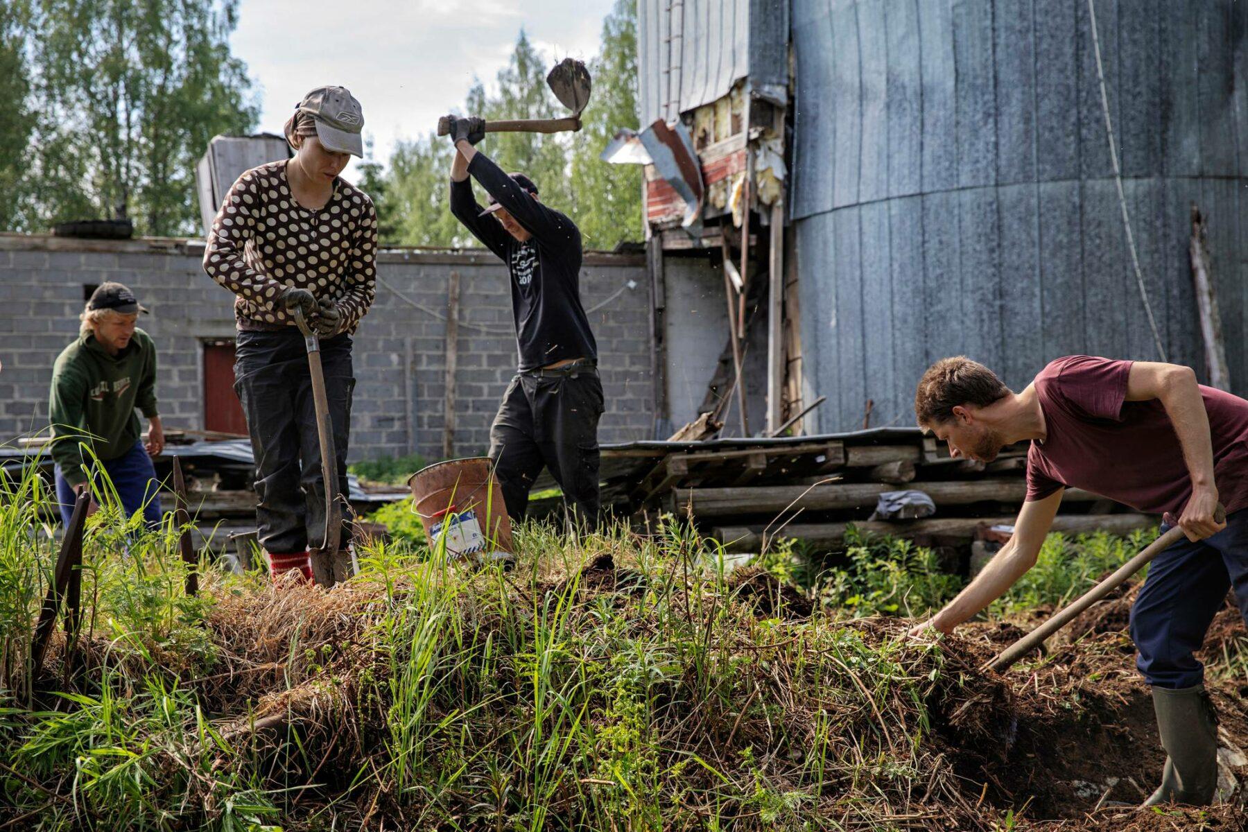 Opiskelijat Alfred, Viivi ja Risto (oik.) sekä rakentamisen opettaja Matti Korhonen (kolmas vas.) purkavat maakellaria.