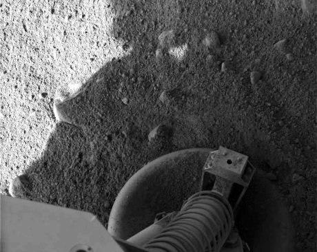 Phoenix Marsissa