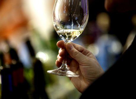 Viininmaistelua ViiniExpo -messuilla Helsingissä 2008.