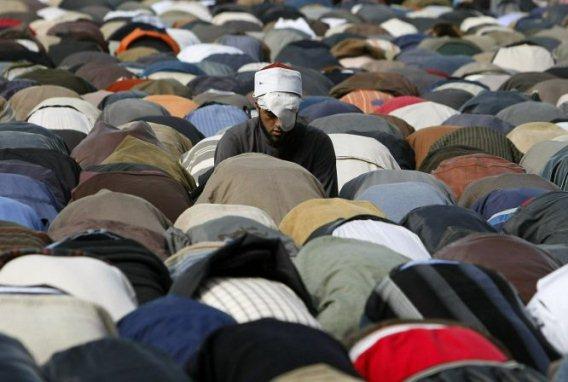 Muslimiveljeskunta